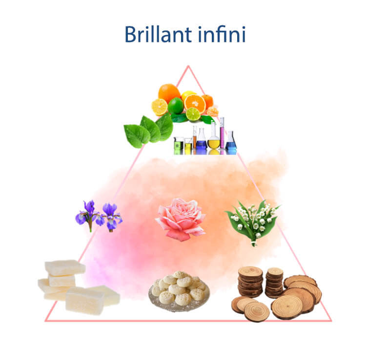 Pirámide olfativa Brillant infini