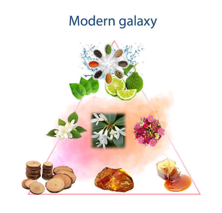 Pirámide olfativa modern galaxy